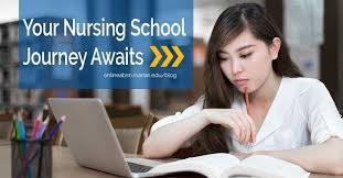 nursing online